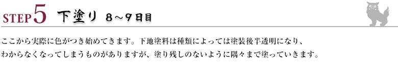 ステップ5下塗り8~9日目