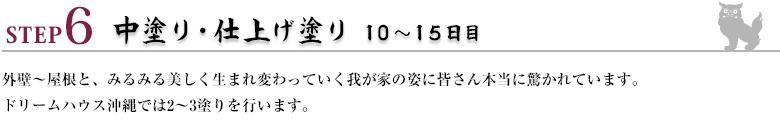 ステップ6:中塗り・仕上げ塗り10~15日目