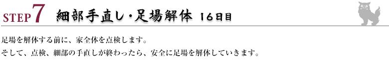 ステップ7:細部手直し・足場解体16日目